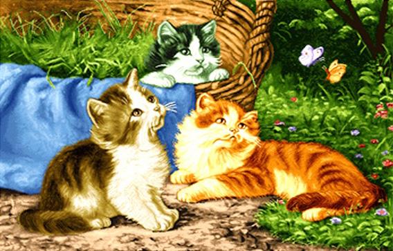 نخ و نقشه گربه های زیبا