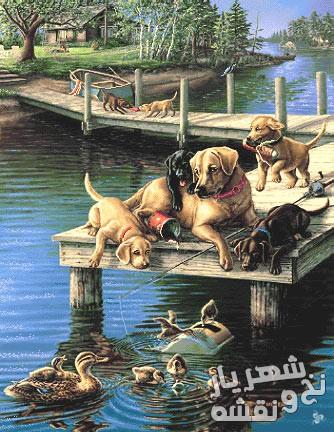خرید اینترنتی نخ و نقشه تابلوفرش سگ و اردک کد h-6413